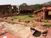 FATEHPUR SIKRI, la ciudad abandonada. India