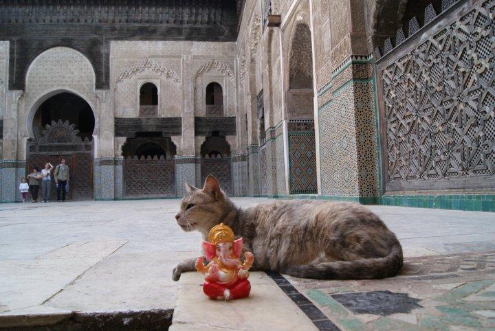Ganesh en Fez
