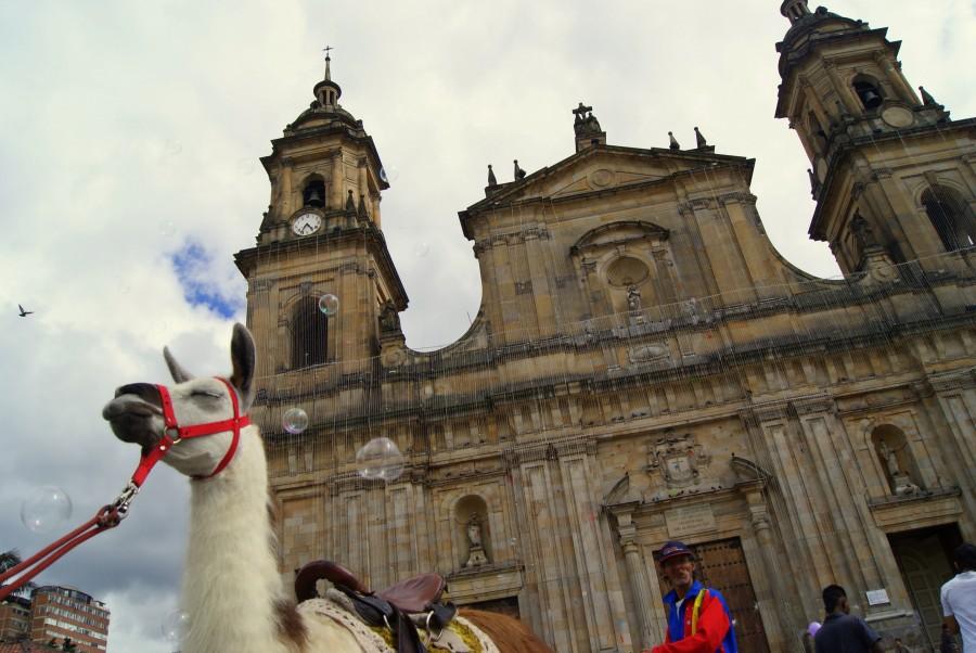 Bogot mis viajes por ah mis viajes por ah - Vuelos puerto asis bogota ...