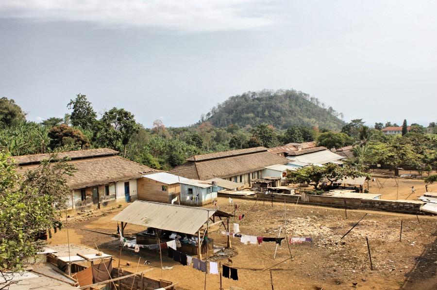 Muchas de las antiguas plantaciones están habitadas