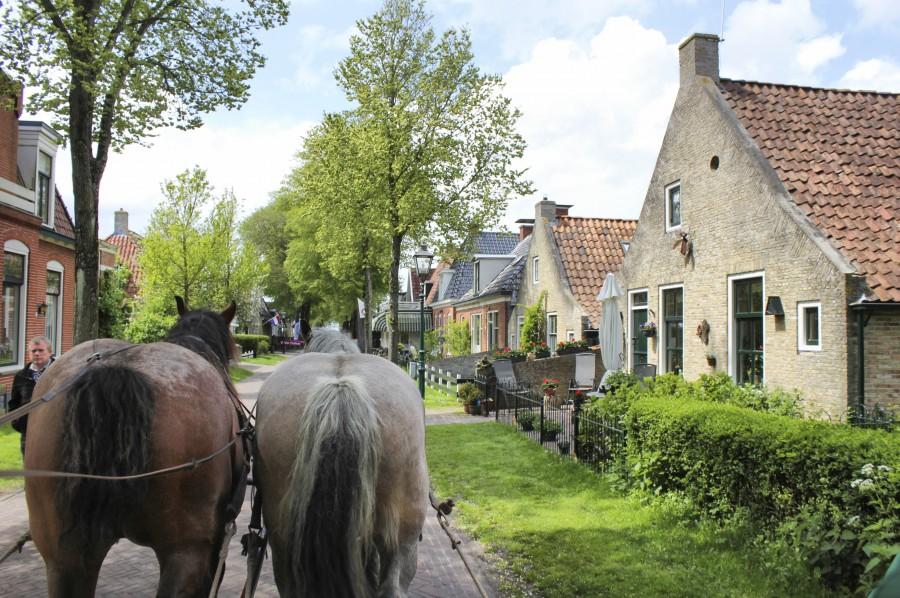 Paseando en carro de caballos por el pueblo de la isla de Schiermonnikoog
