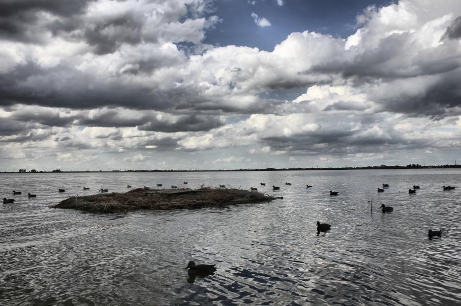isla para cazadores de patos
