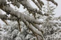 nieve en Sierra Nevada