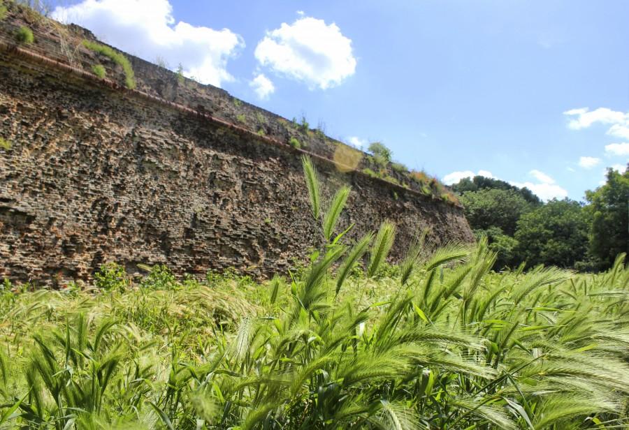 muralla de ferrara