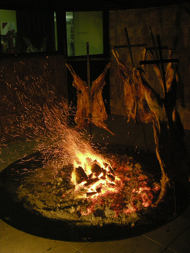 cordero patagonico