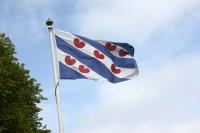 """Bandera de la región de Frisia, los 7 """"pompeblêden"""" rojos representan nenúfares"""