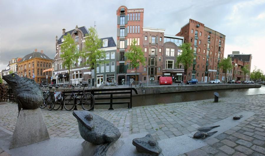 Escultura de la metamorfosis de una rana en Groningen