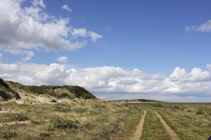 Parque Natural de la isla de Schiermonnikoog