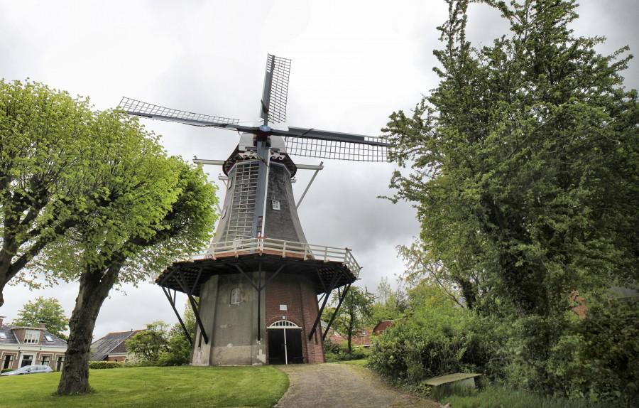 Típico molino holandés