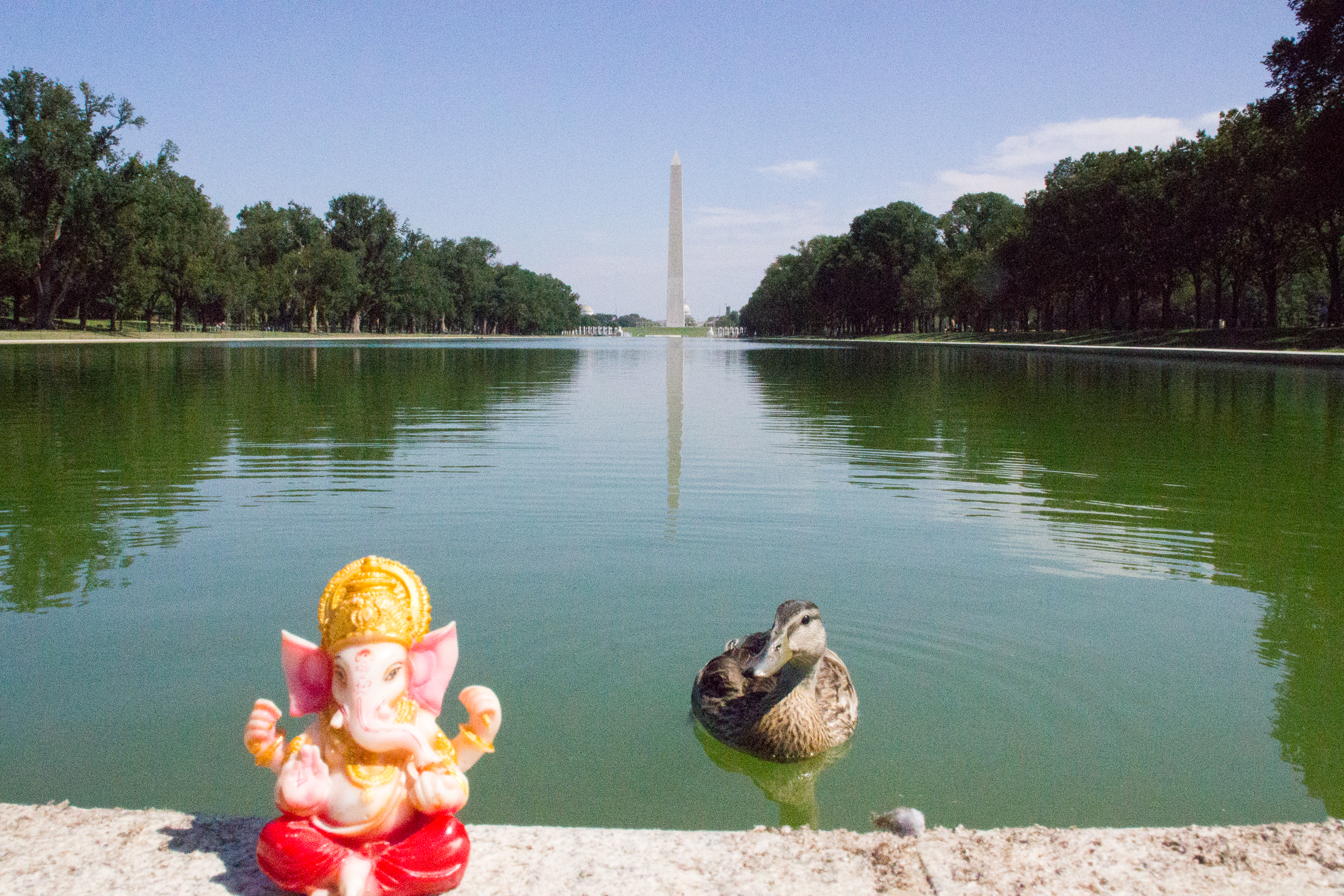 30 cosas gratis que hacer en Washington D.C. Parte I - Mis viajes ...