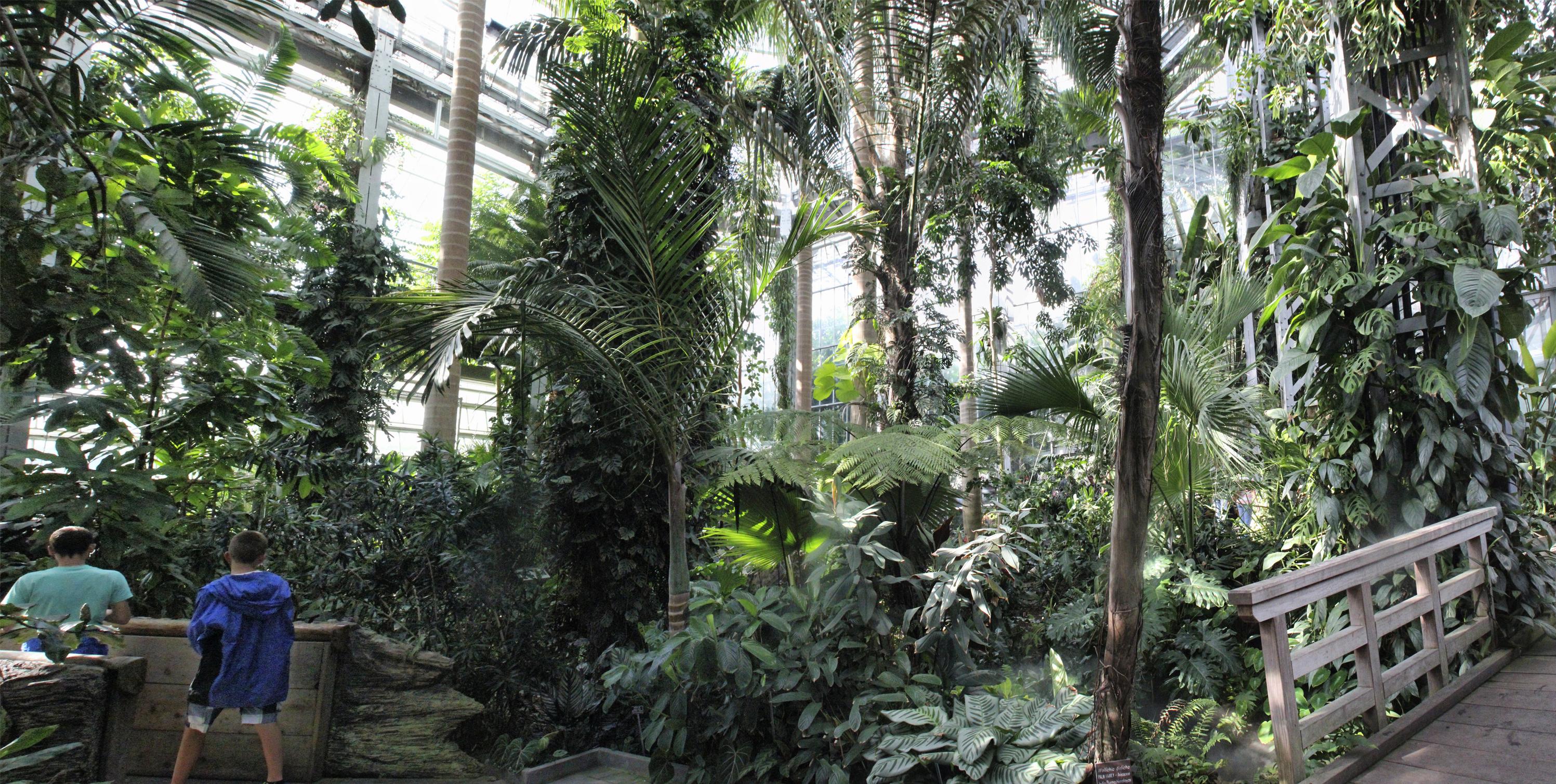 30 cosas gratis que hacer en washington d c parte i mis for Informacion sobre el jardin botanico