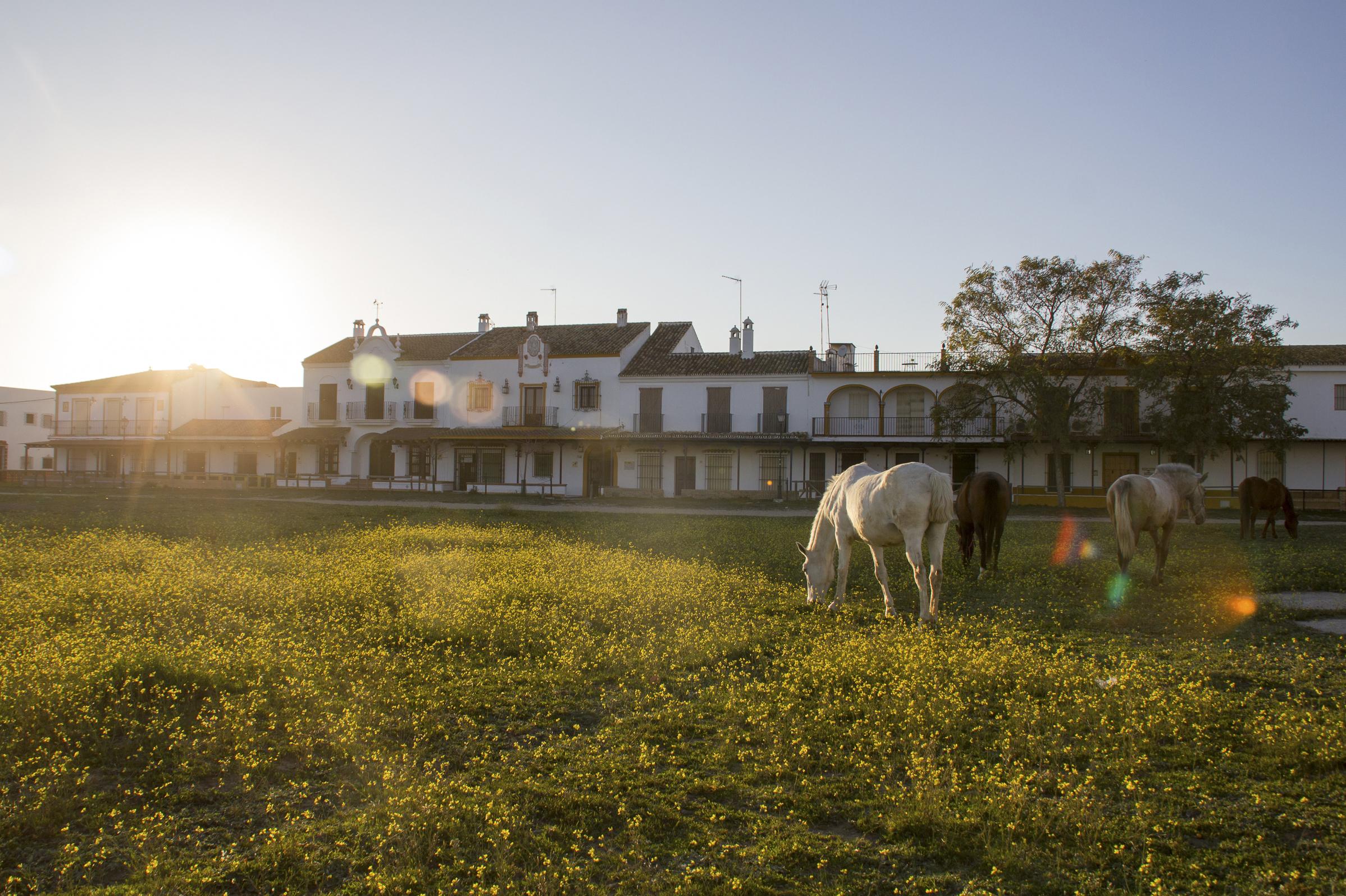 130 cosas que hacer en Huelva