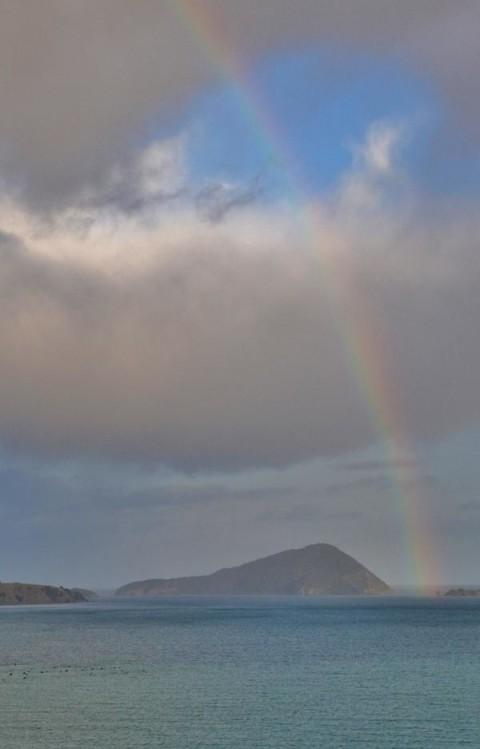 nueva zelanda rainbow