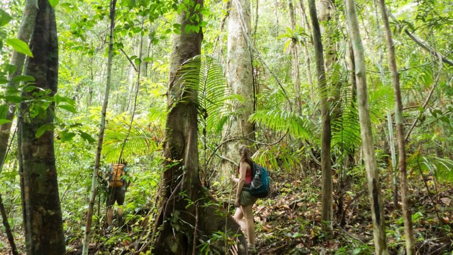 En medio de la jungla tailandesa