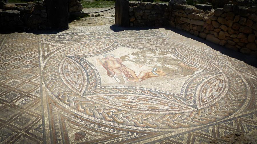 mosaico volubilis