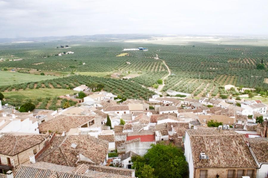 Vistas desde Burgalimar