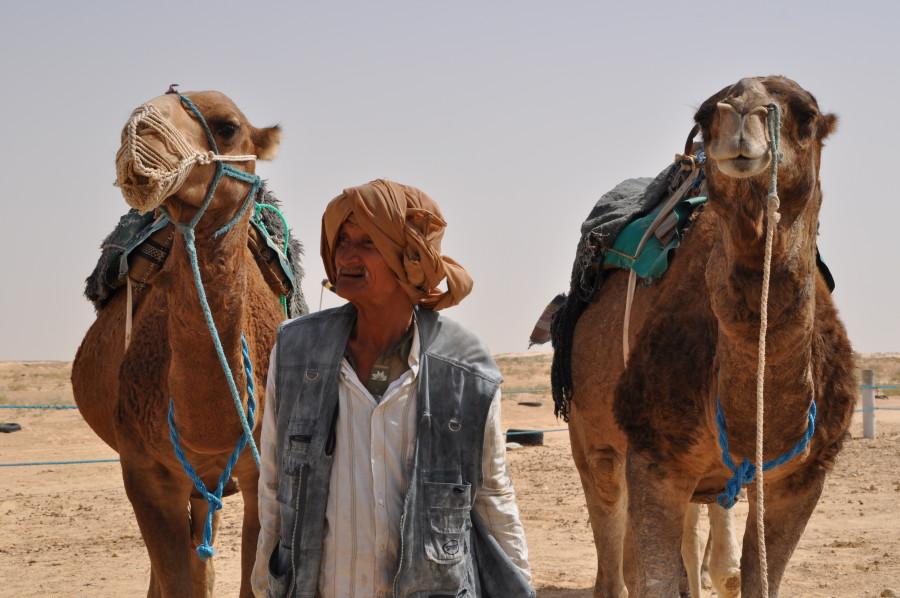 camellos en douz