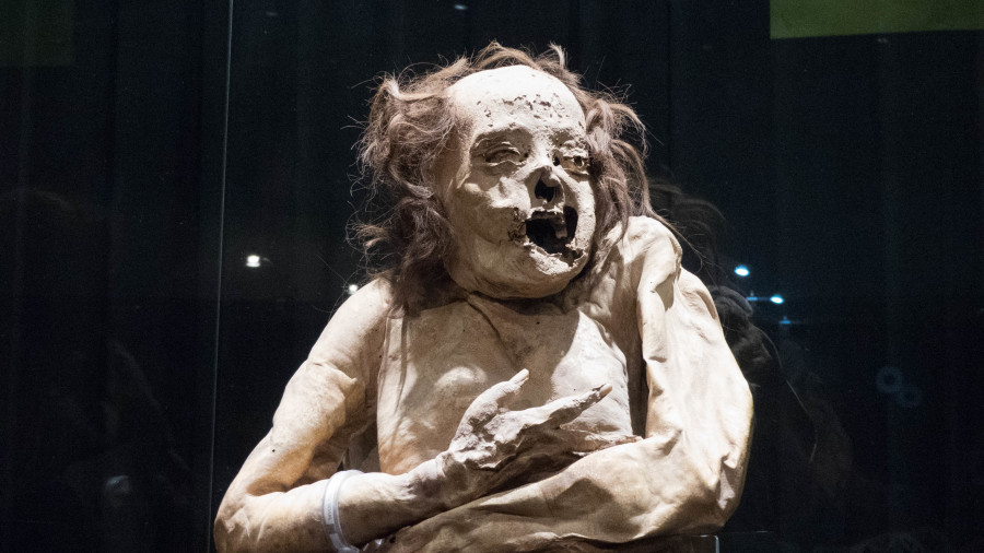 momia viajera guanajuato