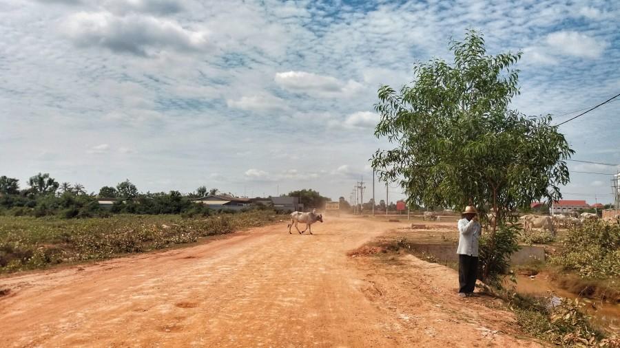 camino de tierra en Camboya