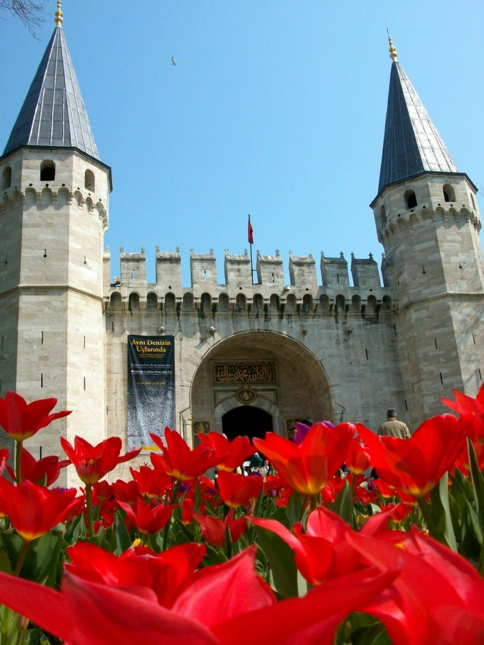 tulipanes en Estambul